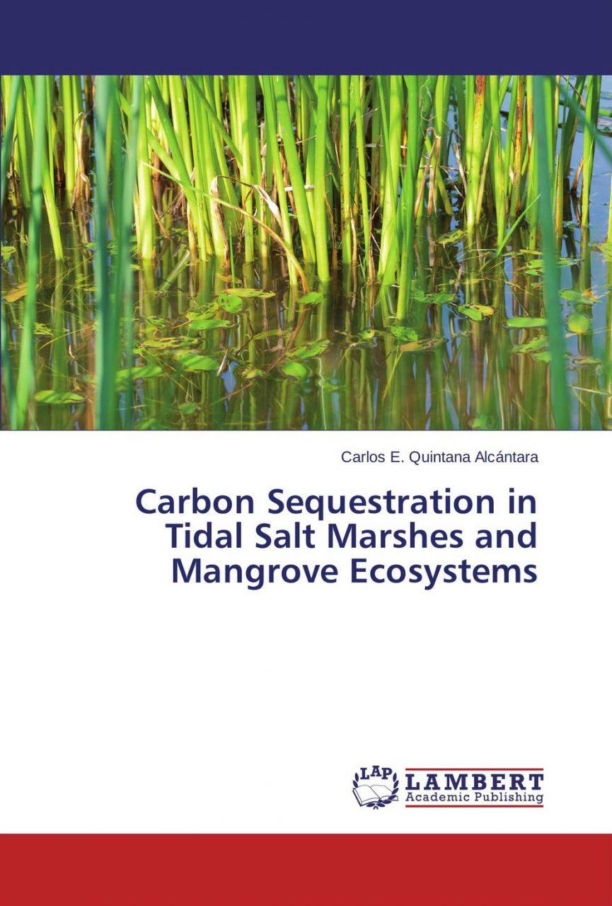Nueva Publicación: P. Carlos Quintana SJ publica investigación ligada al cambio climático