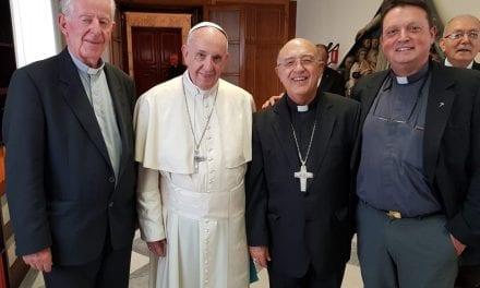 Dos jesuitas peruanos participan en reunión preparativa del Sínodo Panamazónico