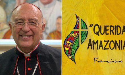 Cardenal Barreto: Próximas conferencias sobre Exhortación Apostólica «Querida Amazonía»