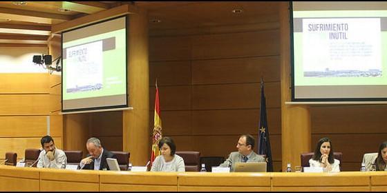 España: SJM pide el cierre de los Centros de Internamiento de Extranjeros