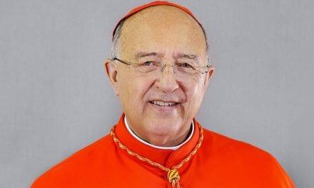 Cardenal Pedro Barreto SJ, miembro de Dicasterio dedicado al desarrollo humano