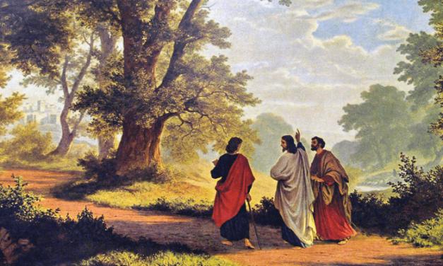 """Curso virtual """"El camino de Jesús"""" con el P. Gerardo Aste, SJ"""