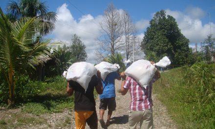 El Sector Jesuita de Justicia Social y Ecología durante la pandemia en el Perú