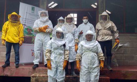 SAIPE: taller de capacitación en apicultura a jóvenes
